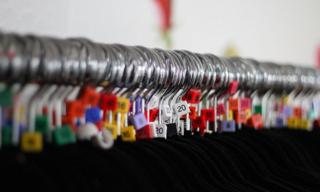 Drabuziai-internetu-dydziai